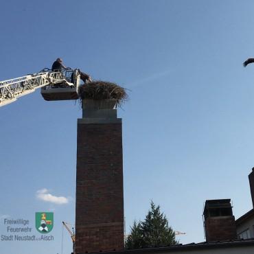 Feuerwehr half beim Beringen von Störchen (05./08.06.2019)