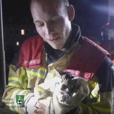 Katze aus Öltank befreit (25.09.2019 um 21:57 Uhr)