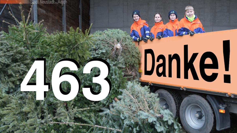 Neuer Rekord: 463 Christbäume eingesammelt!
