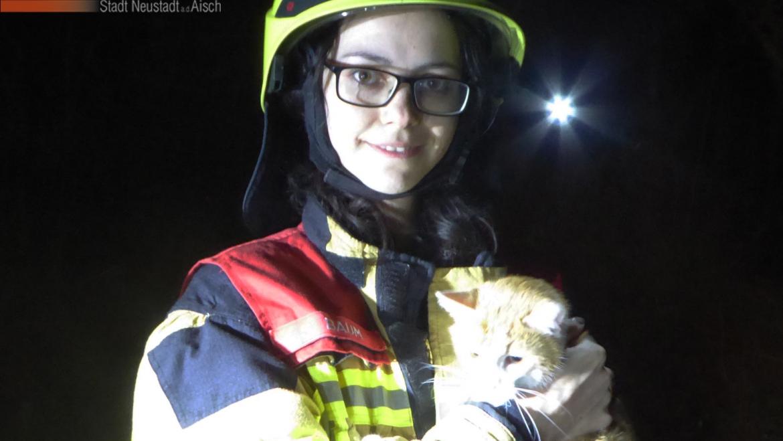 Alarm: Rettung Kleintier (17.03.2020, 19:10 Uhr)