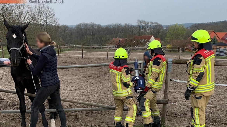 Pferd aus misslicher Lage befreit (20.03.2020, 16:40 Uhr)