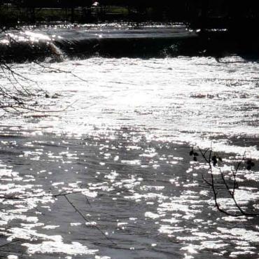 Öl auf Gewässer (19.08.2021, 18:15 Uhr)